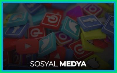 Instagram, Youtube, Tiktok, Twitch